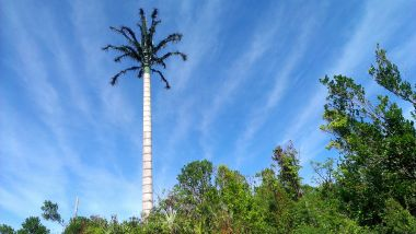 This radio tower is now a Bahamaian Palm Tree on Eleuthera Island. And look at that sky!